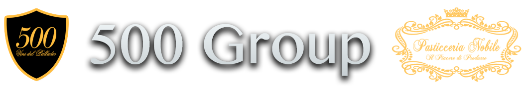 500-group-logo